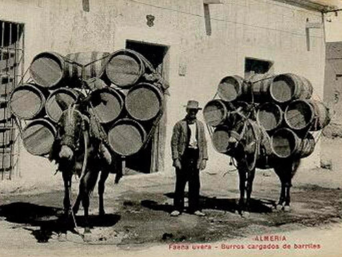 Comercio dela uva en Almería